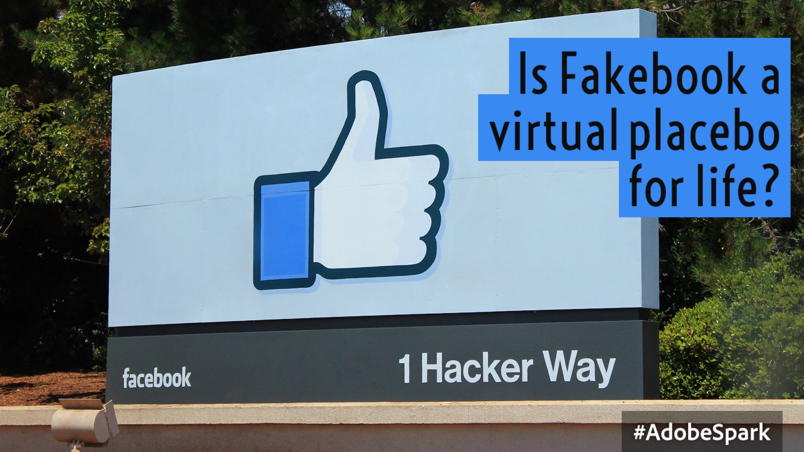 Fakebook Part 1: Is Facebook a virtual placebo for life?